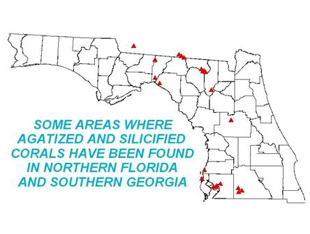 Agatized Coral Locations